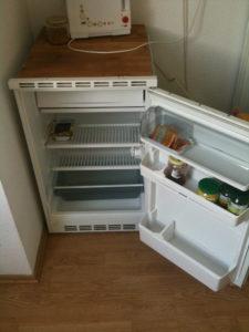 Kühlschrank leer - Zeit sich mit der Brennessel anzufreunden