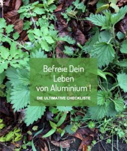 Aluminium ausleiten - kostenlose Checkliste