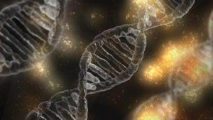 Magnesium ist wichtig beim Aufbau der DNA